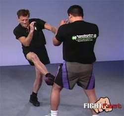 Oblique Kick: Strike the knee