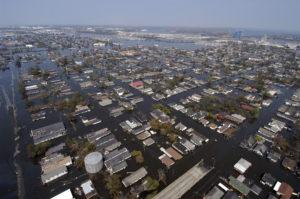 Survival in a Catastrophic Environment: Hurricane Katrina