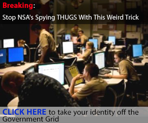 Stop NSA spying thugs with this weird trick.