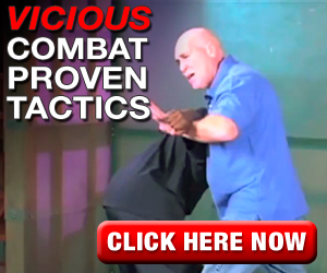 Vicious Combat Proven Fight Moves